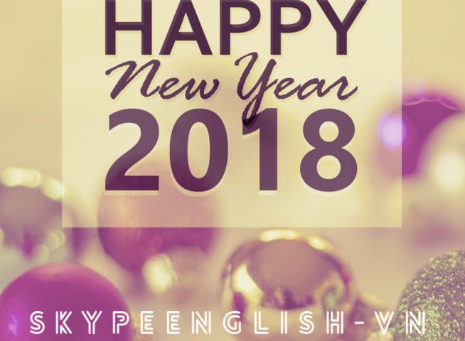 skype english vietnam